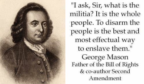 I ask, sir, what is the militia? It is the whole people except for a few public officials.
